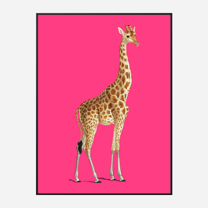Vintage Giraffe Illustration Bright Pink Art Print
