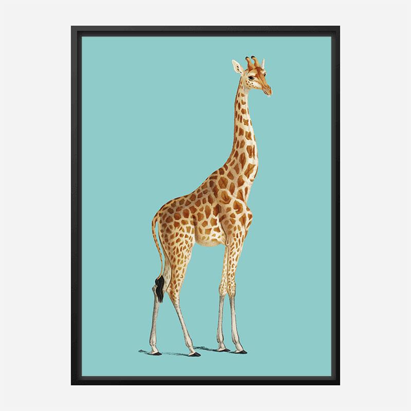 Vintage Giraffe Illustration Blue Art Print