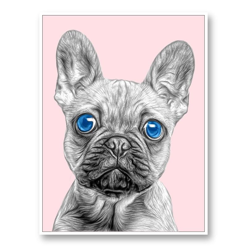 Blue Eyes French Bulldog Art Print