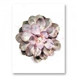 Succulent 01 Wall Art Print