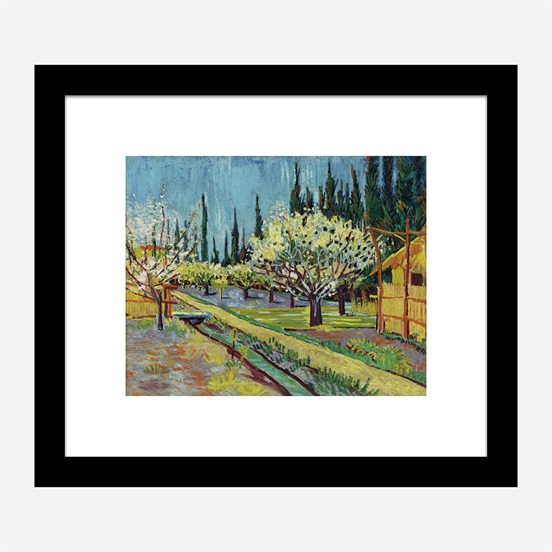 Orchard Bordered by Cypresses by Vincent Van Gogh Art Print